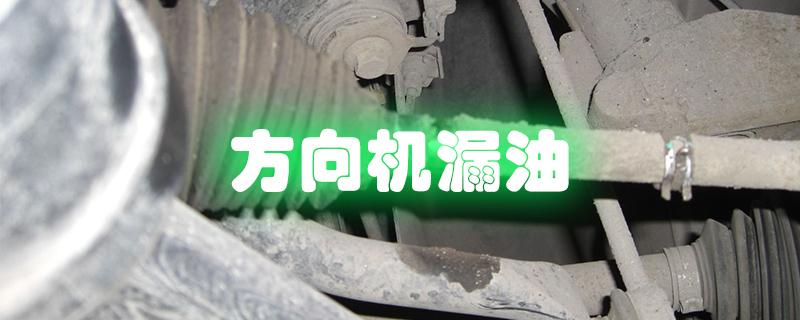 汽车方向机漏油怎么处理?,方向机用什么油
